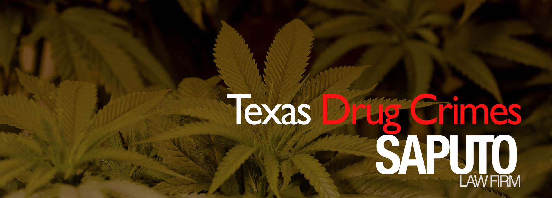Texas Drug Crimes Graphic