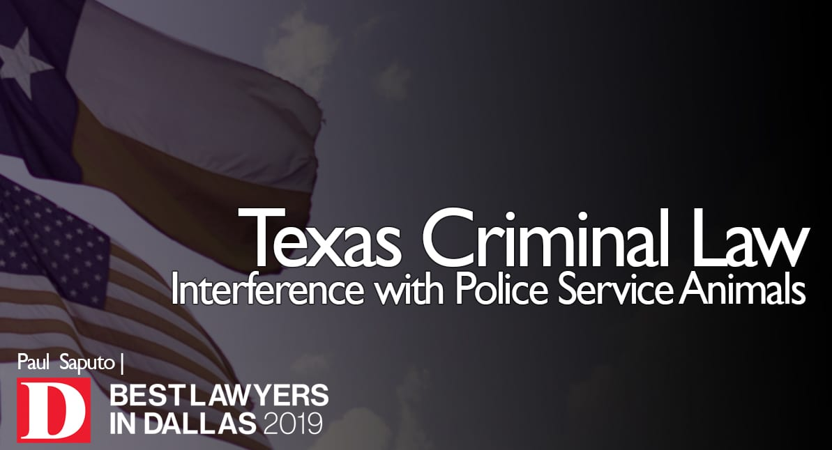 Interference with Police Service Animals graphic with Texas flag